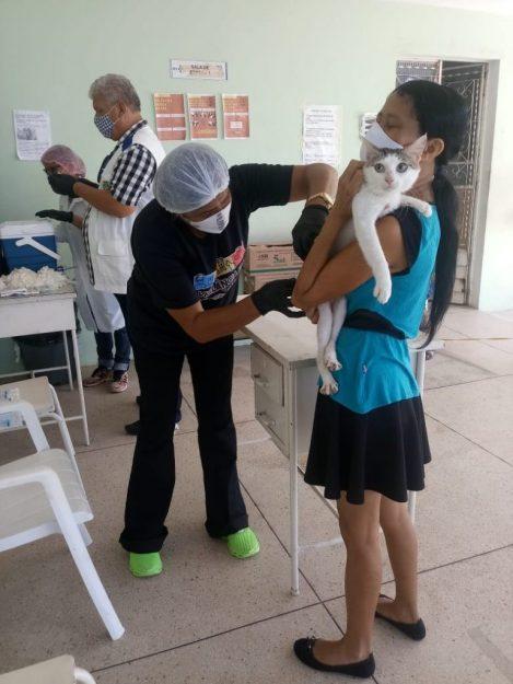 Nova etapa de vacinação de cães e gatos contra a raiva acontece no sábado em Maceió; veja os locais